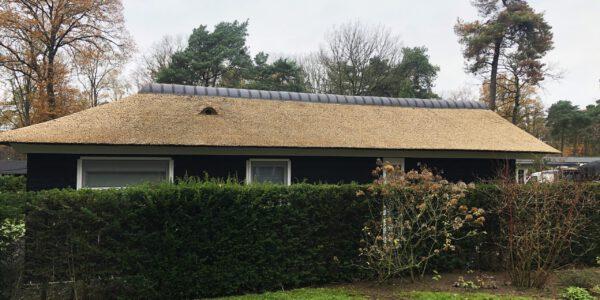 kunstriet dak door Sluyer Rietdekkers