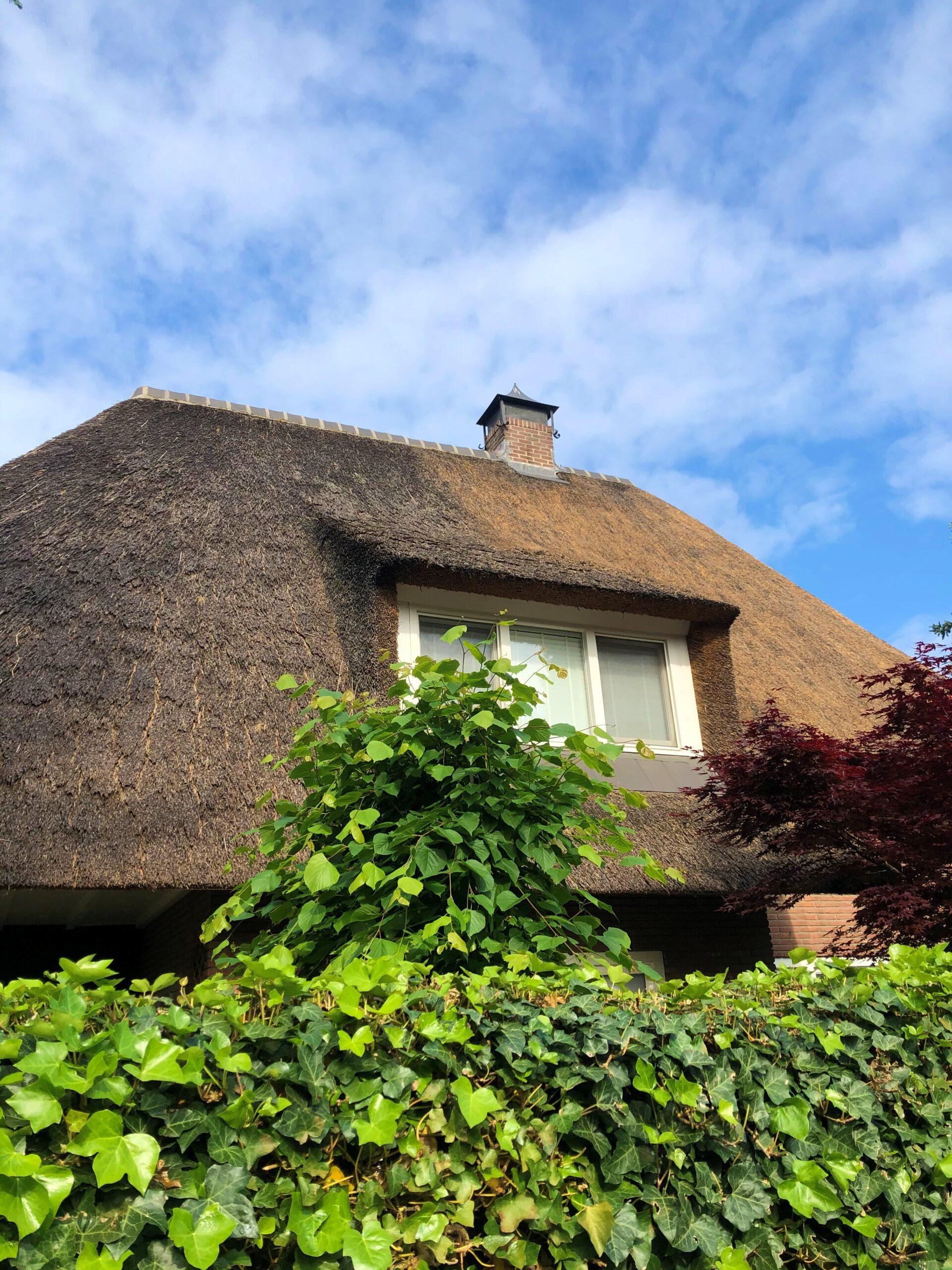 Sluyer Rietdekkers Heeft In Apeldoorn Een Rieten Dak Onderhouden