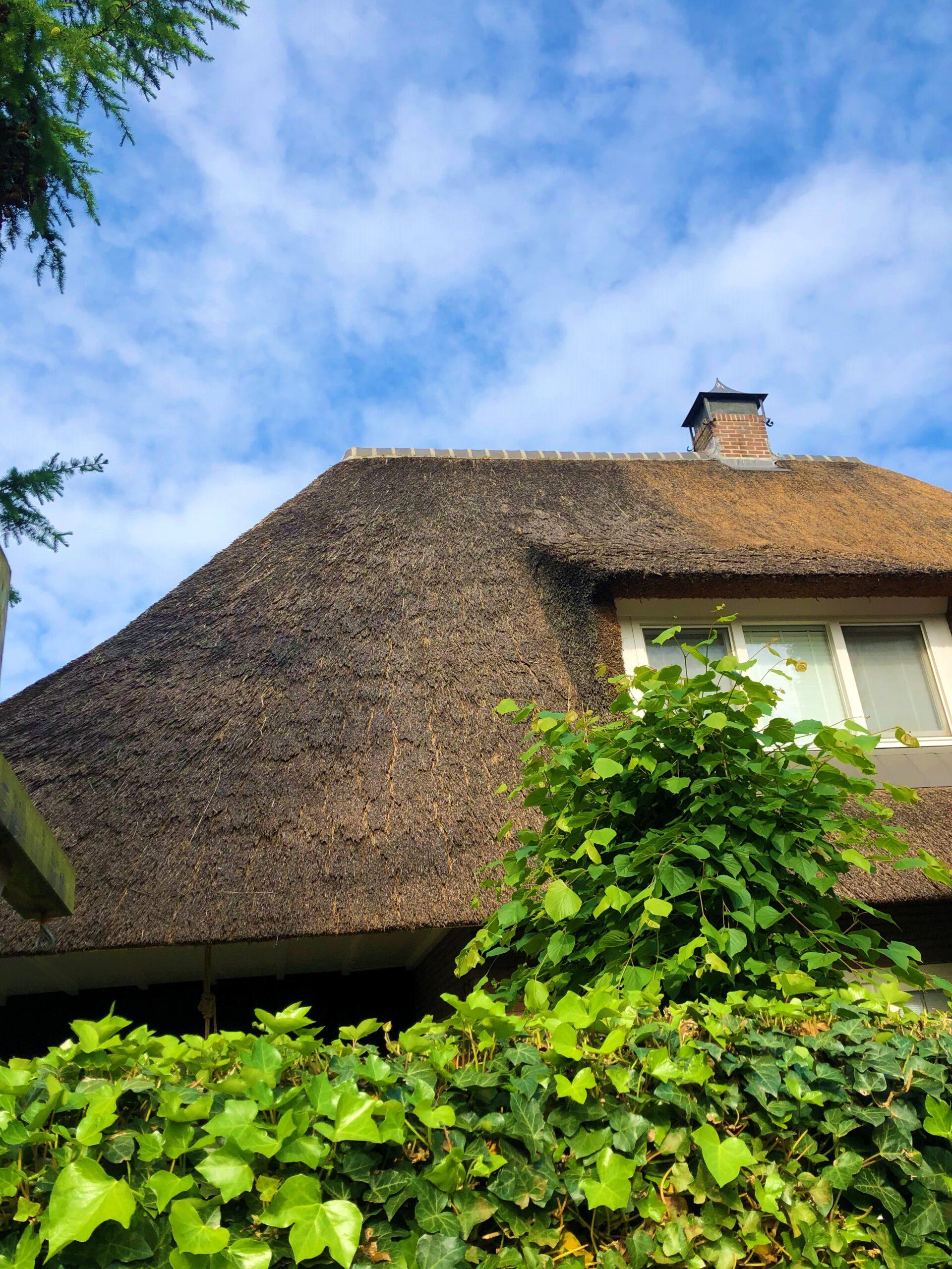Onderhoud Rieten Dak In Apeldoorn